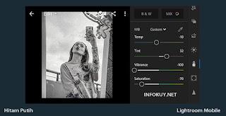 COLOR - Cara Edit Foto Hitam Putih di Lightroom