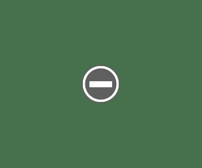 netbusinestring bitcoin