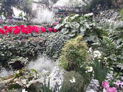 Allan Gardens Conservatory 2019 Winter Flower Show six by garden muses--not another Toronto gardening blog