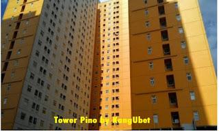 Green Pramuka City | Tower Pino