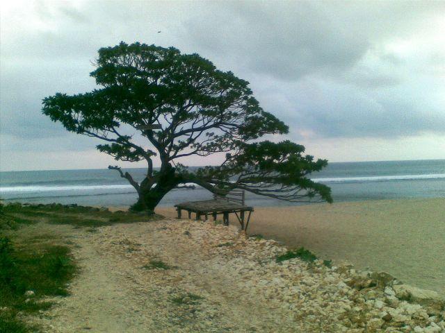 pantai poh tunggal