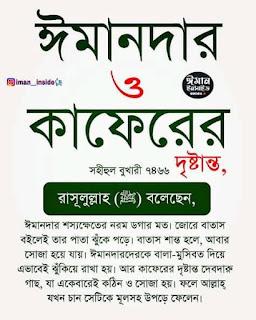 quran quotes in bengali