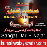 https://www.humaliwalayazadar.com/2019/09/sangat-dar-e-najaf-nohay-2020.html