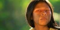 projet de réserve en Amazonie