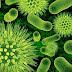 कोरोना वायरस/Covid19 संबंधी भ्रांतियां