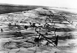 Espárragos de Rommel, Normandia Día D