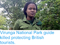 https://sciencythoughts.blogspot.com/2018/05/virunga-national-park-guide-killed.html
