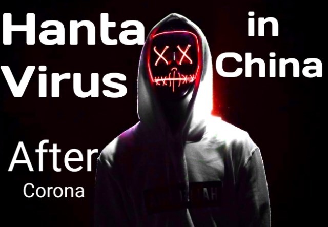 Hantavirus : hanta virus in china, hantavirus map, hantavirus treatment, hantavirus test, hantavirus transmission, hantavirus anxiety, how common is hantavirus, hantavirus test cost, hantavirus prevention