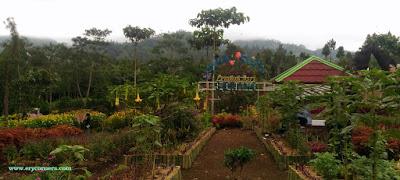 Kebun Bunga Lembah Asri Serang