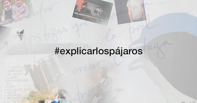 #explicarlospájaros