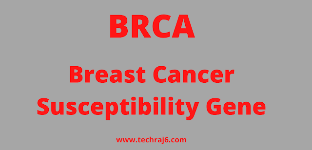 BRCA full form, What is the full form of BRCA