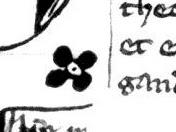Motivo floral cuadrifolio