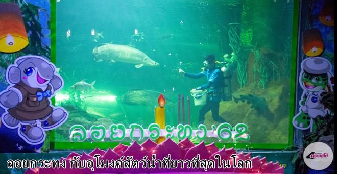 คลิป-นักท่องเที่ยวร่วมกิจกรรมงานลอยกระทง กับอุโมงค์สัตว์น้ำที่ยาวที่สุดในโลก