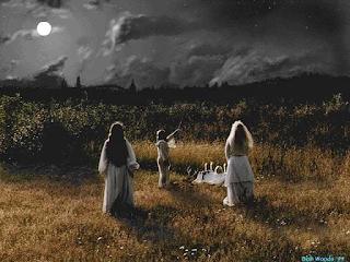 erbe-magie-notte di san giovanni