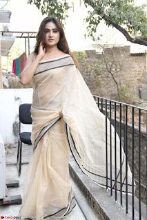Sony Charishta in Brown saree Cute Beauty   IMG 3594 1600x1067.JPG