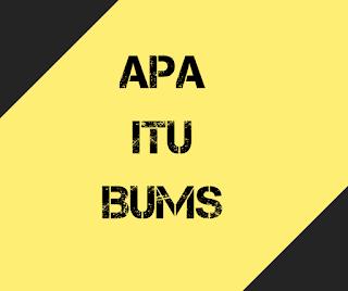 Apa itu BUMS, pengertian bums