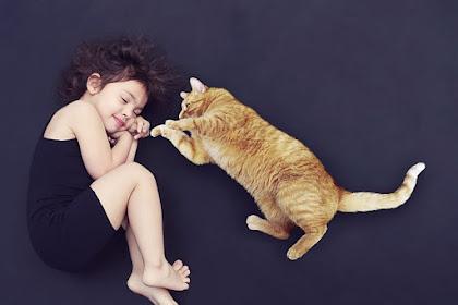 Yuk, Cari Tahu Penyebab Susah Tidur Malam dan Cara Mengatasinya