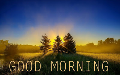 nature good morning hd images