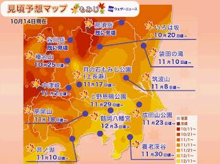 2020東京+關東紅葉預測