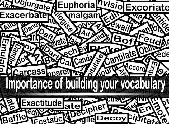 The Importance Of Building Your Vocabulary