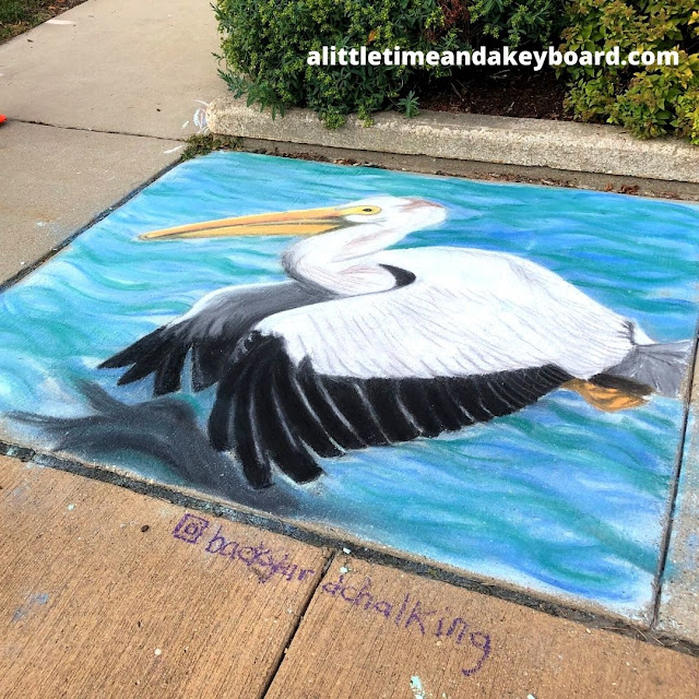 Magnificent Pelican Chalk Art by Backyard Chalking