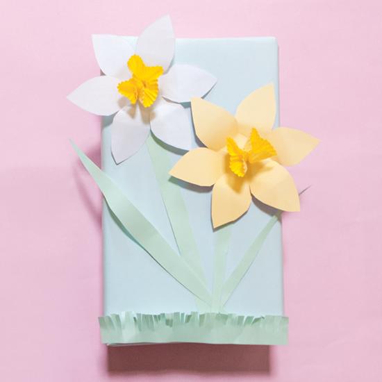Daffodil Gift Wrap | LLK-C.com