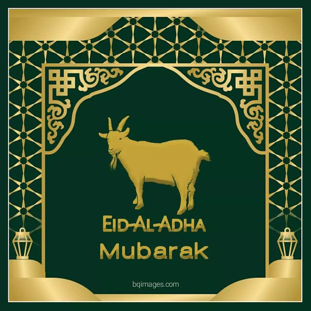 eid ul zuha bakrid images