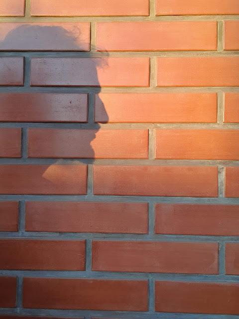 Soy una sombra