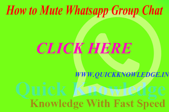 How to Mute Whatsapp Group