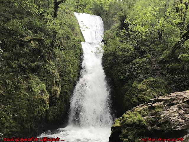 Oregon Bridal Veil Falls Columbia River