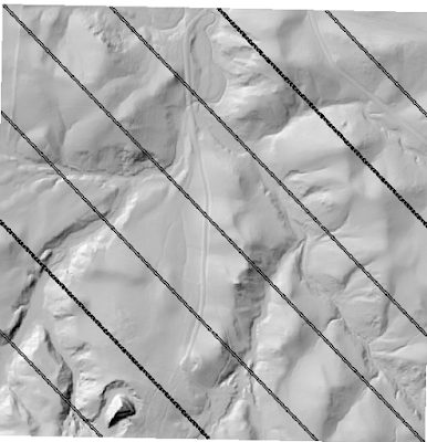 DEM from LiDAR with black stripes