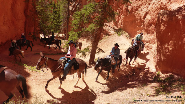 horseback riders navigating switchbacks