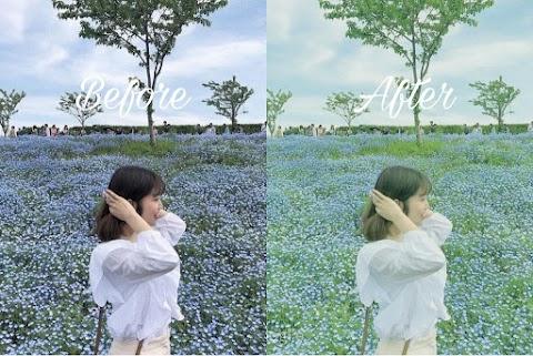 แต่งรูป Lightroom โทนญี่ปุ่น เขียวสดใส