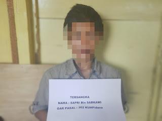 Nyolong Motor di Pasar Kuala Jambi, Sapri Ditangkap di Rano