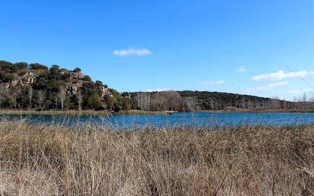 Laguna Conceja. Lagunas de Ruidera