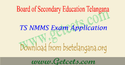 TS NMMS application form 2018 notification,ts nmms notification 2018