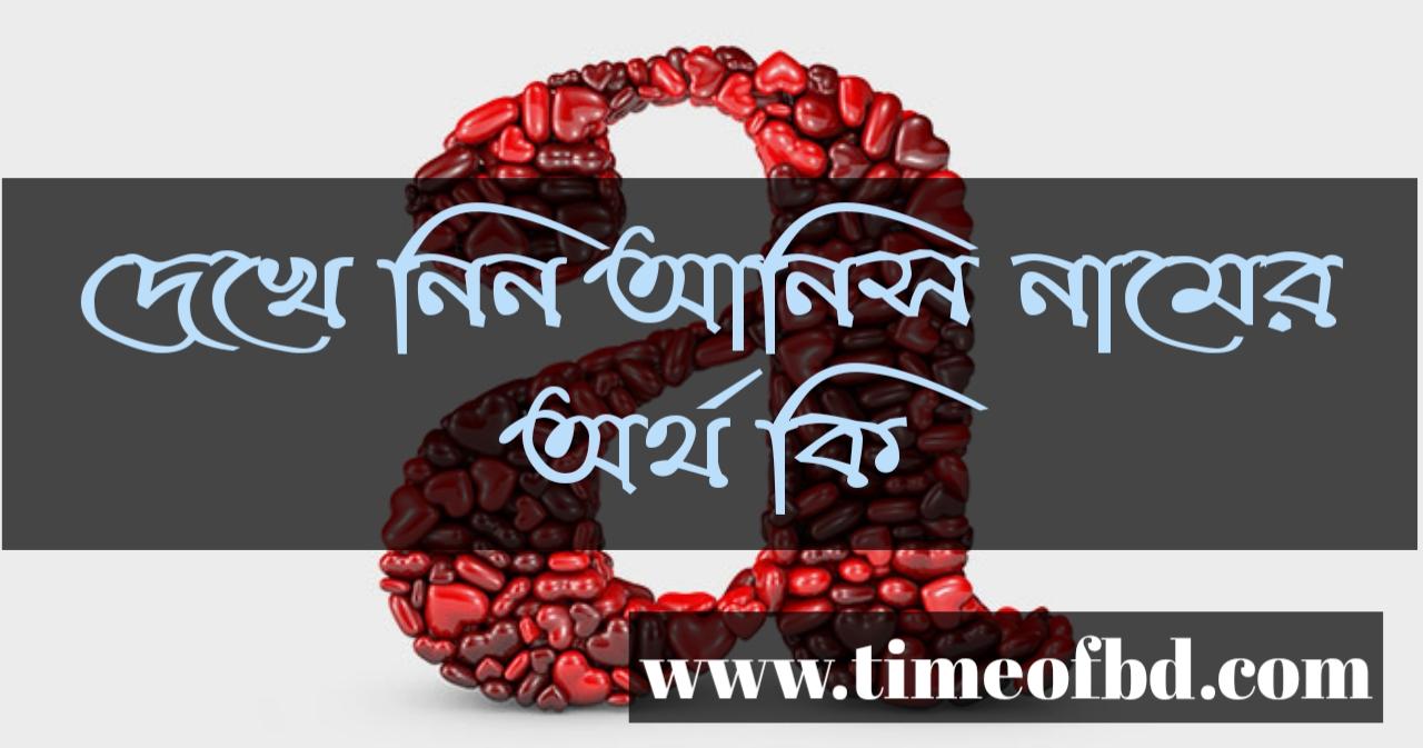 Anis name meaning in Bengali, আনিস নামের অর্থ কি, আনিস নামের বাংলা অর্থ কি, আনিস নামের ইসলামিক অর্থ কি,