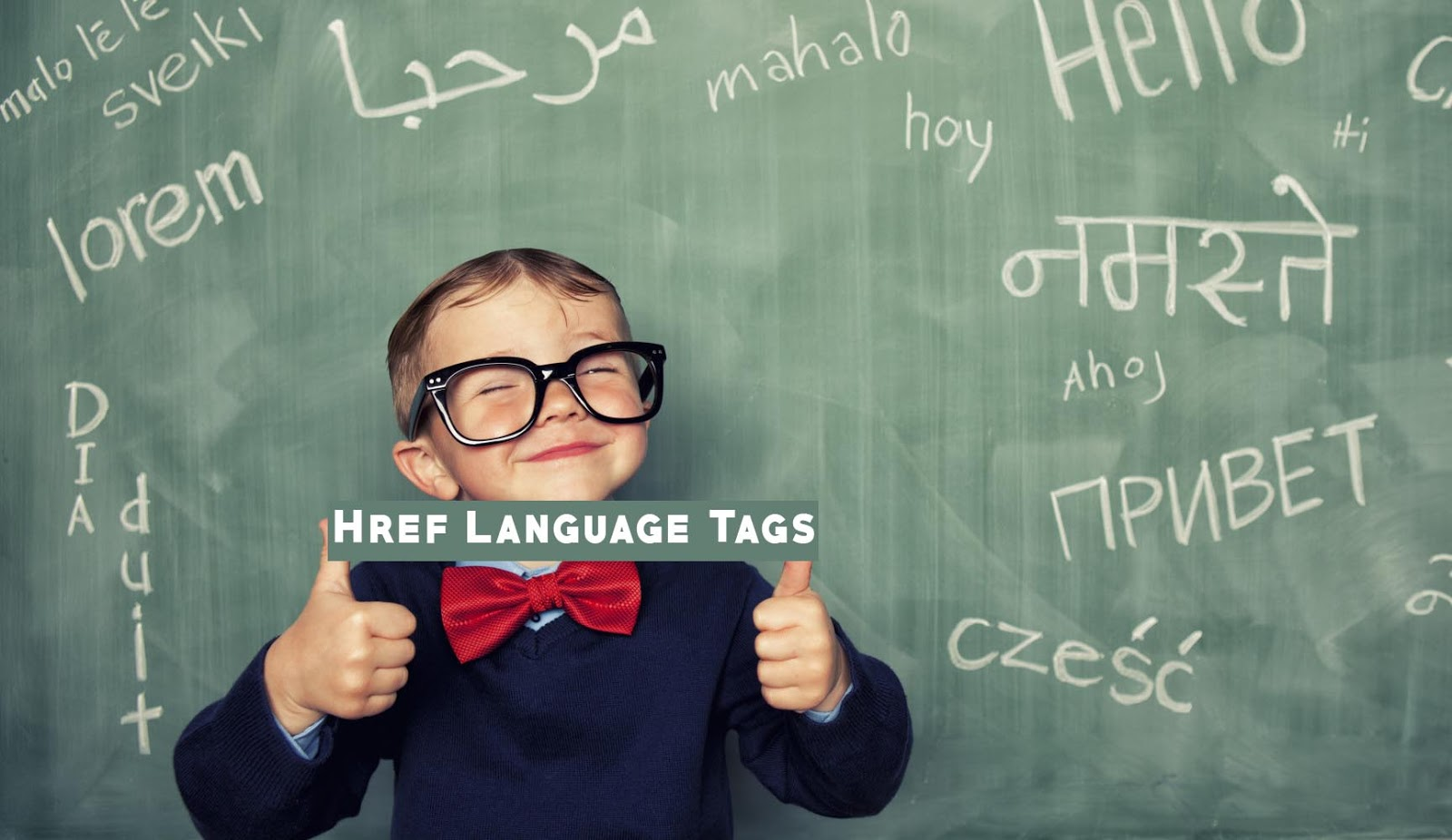 how to add a href language tag to blogger blog guide