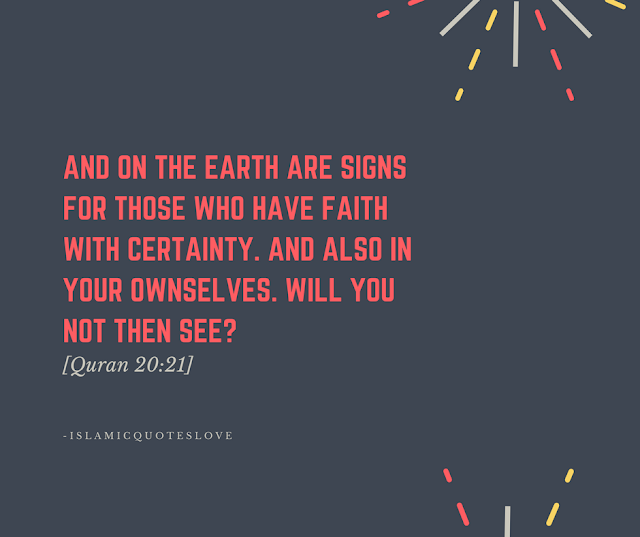 And on the Earth are signs for those who have faith with certainty. And also in your own selves. Will you not then see? -Quran [20:21]