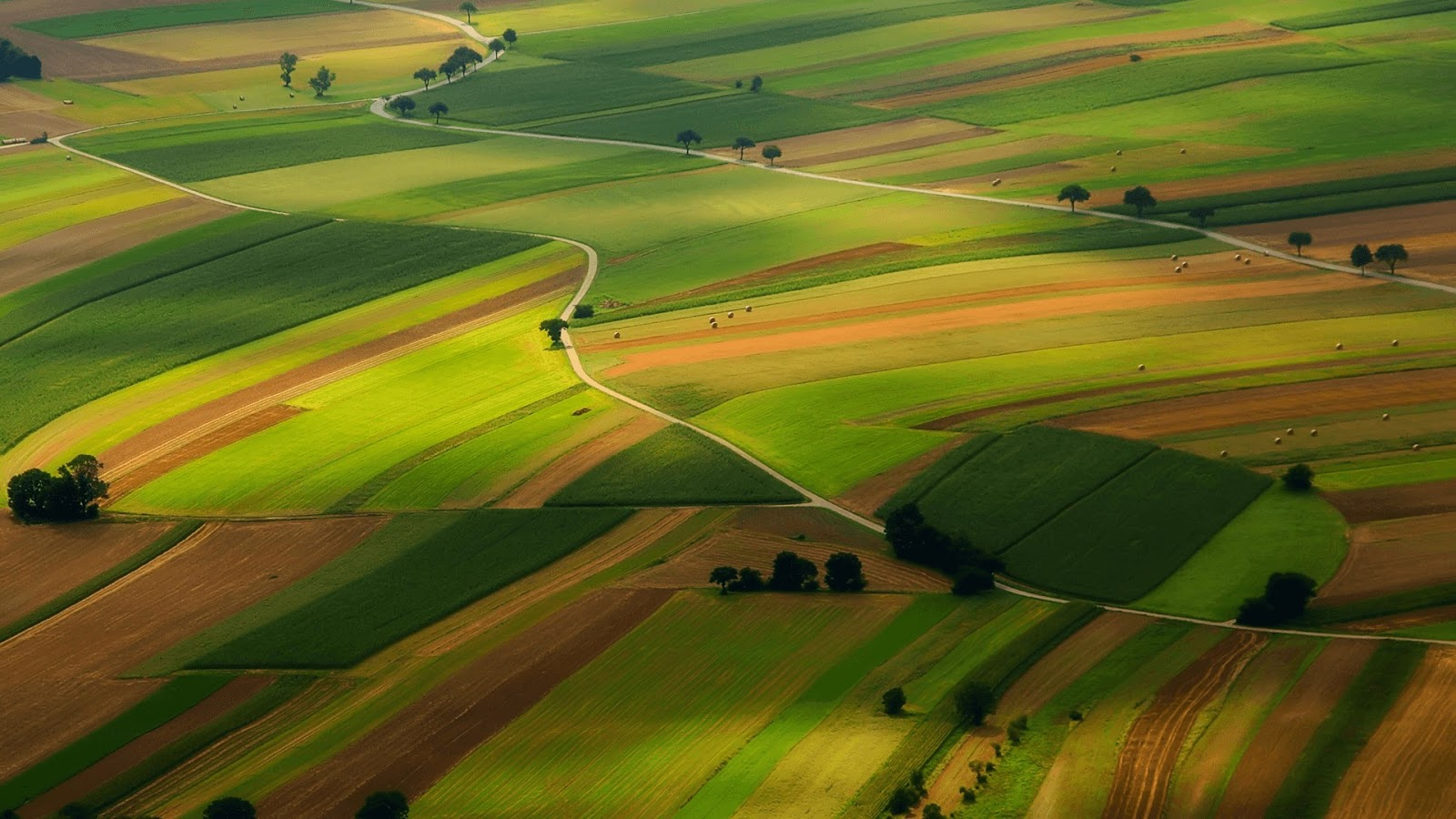 Download Aerial Farmland PREMIUM, Tema per Windows 10