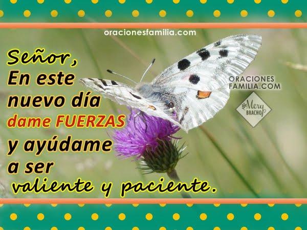 http://www.oracionesfamilia.com/2017/07/oracion-para-este-dia-plegaria-en-manana.html