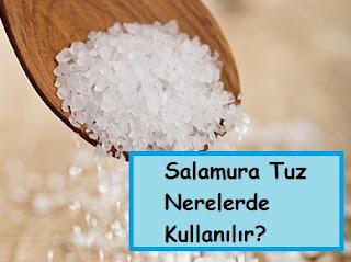 Salamura Tuz Nerelerde Kullanılır?