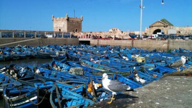 بعد إغلاقه بسبب كورونا…ميناء الصويرة يستأنف نشاطه