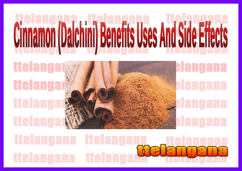 Cinnamon (Dalchini) Benefits Uses And Side Effects