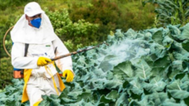 Αργολίδα: Αύξηση των προϊόντων που έφεραν υπολείμματα γεωργικών φαρμάκων