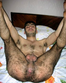 Rodolfo recommend best of east middle cock