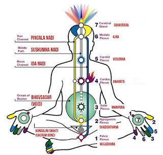 kundalini reiki kya hai || what is kundalini yoga ucha nilai