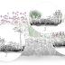9 pomysłów na rośliny strukturalne, które ustawią każdą rabatę na 3 sposoby.