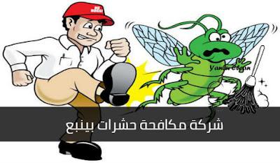 شركة مكافحة حشرات بينبع, شركة رش حشرات بينبع, افضل شركة مكافحة حشرات بينبع