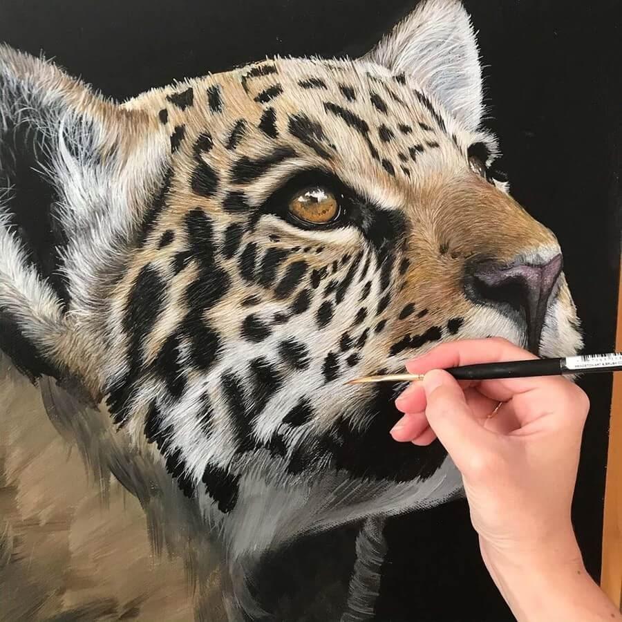 02-Jaguar-Kitten-Claire-Milligan-www-designstack-co